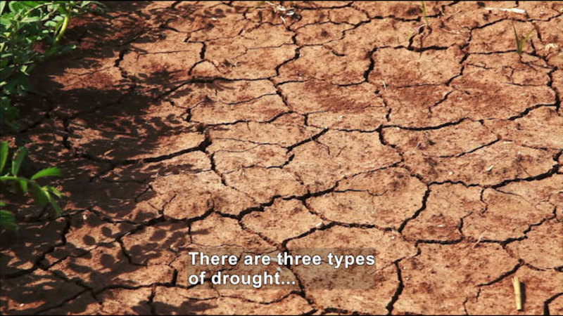 A patch of dried, cracked, mud. Caption: There are three types of drought…