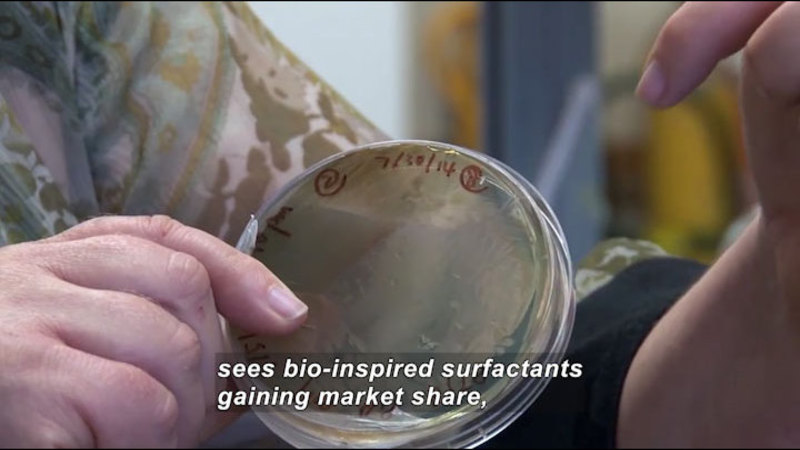 Person holding a lid. Caption: sees bio-inspired surfactants gaining market share,